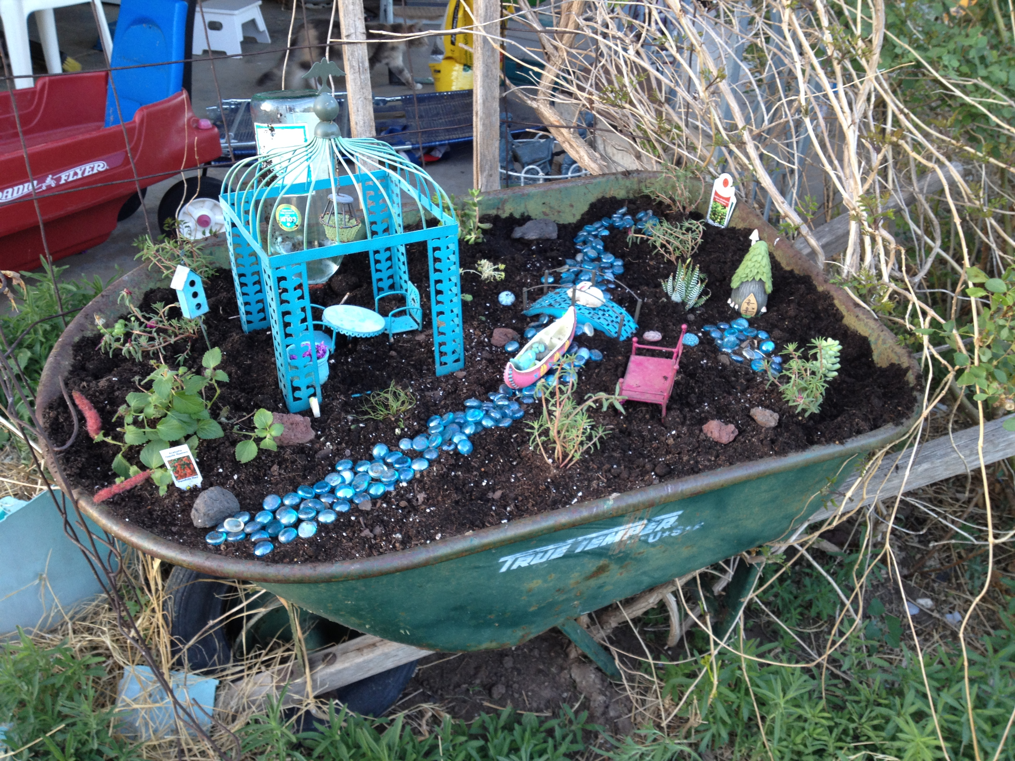 how to grow a fairy garden
