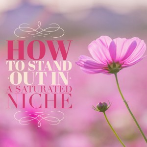 how to stand out in a saturated niche