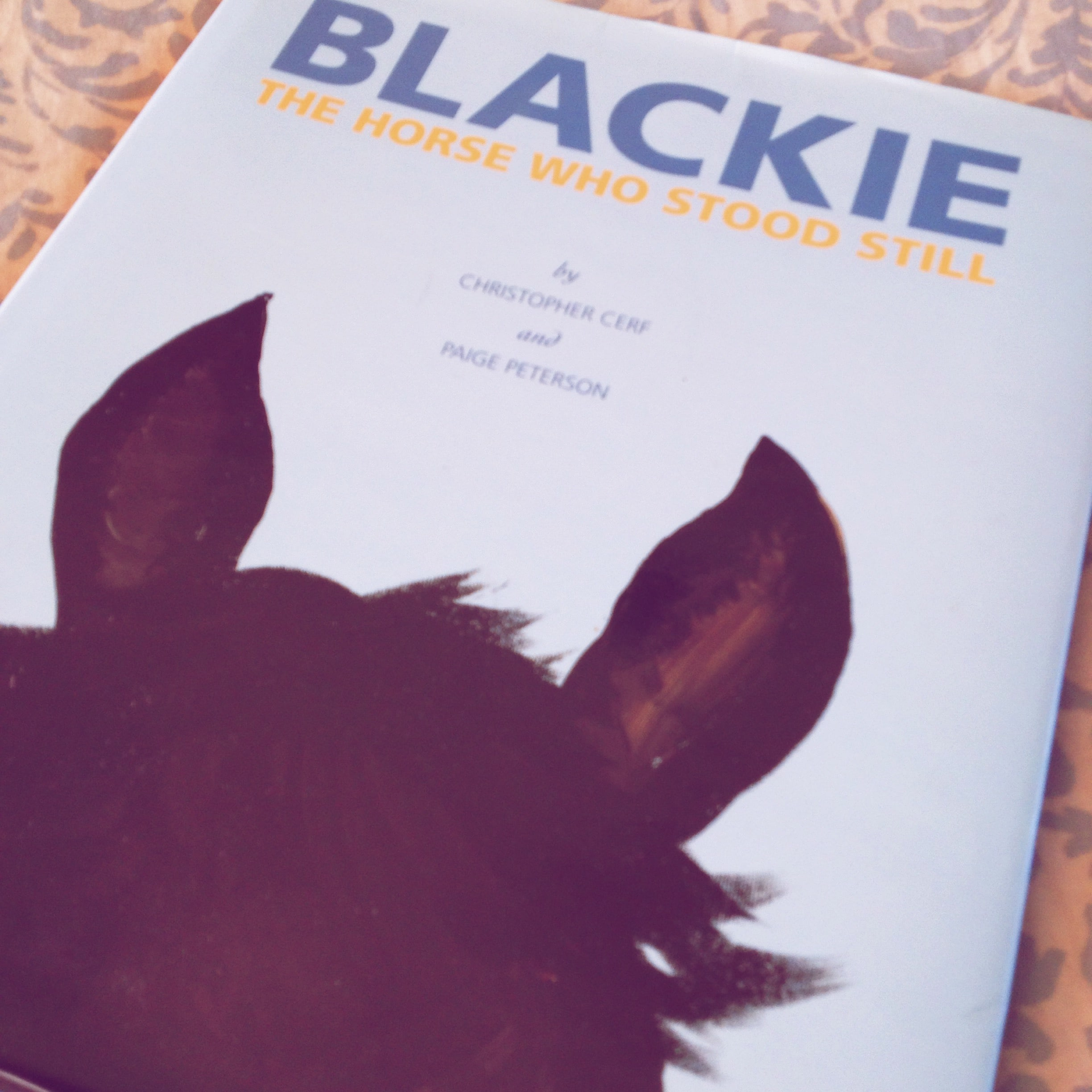 Blackie The Horse Who Stood Still {Book Review} ItsaWahmLife.com