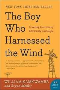 The Boy Who Harnessed the Wind. A Year of Words book recommendation for the word Joy. ItsaWahmLife.com